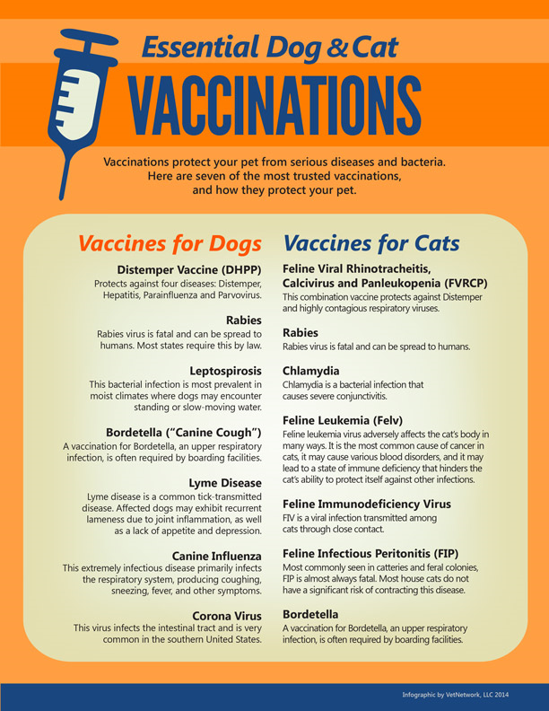 Essential Dog & Cat vaccinations chart